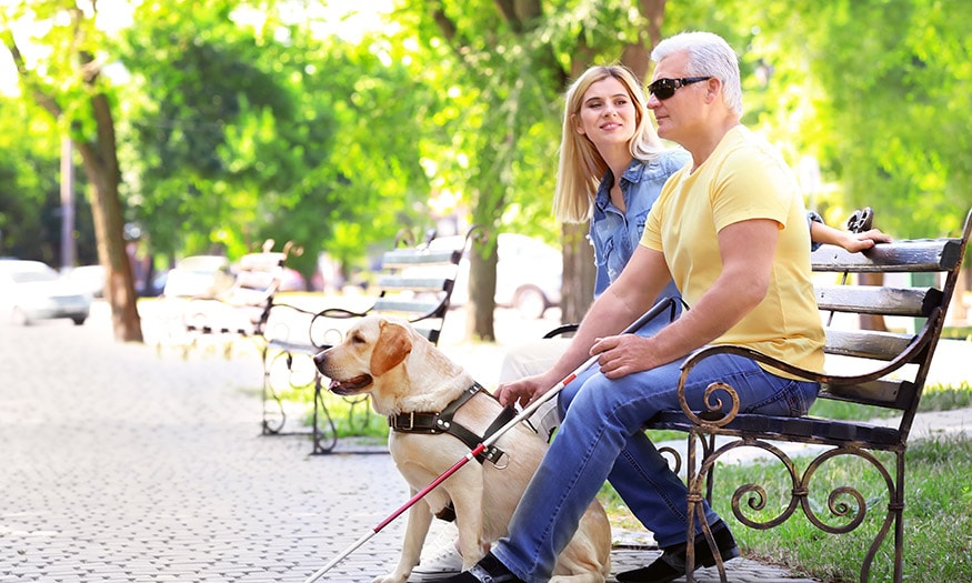 A woman sits with her father on a park bench. He is blind, and has his guide dog and cane with him.